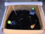 ペットボトルの湯たんぽss.jpg